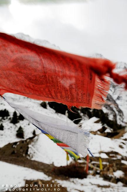 Imagine cu steaguri nepaleze de rugăciune, Himalaya, Nepal, 4200m altitudine.
