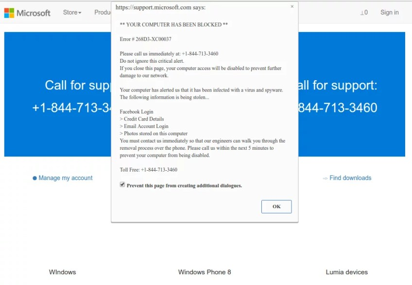 Microsoft Tech Support scam