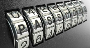 Password meter services risk