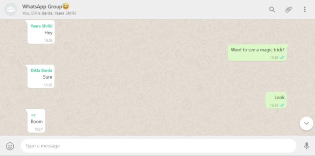 Message disable WhatsApp chat