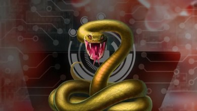 Fresenius attacked with Snake ransomware
