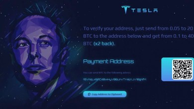 Cryptocurrency giveaways of Elon Musk