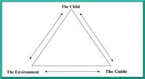 Montessori Triad