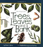 Trees, Leaves and Bark