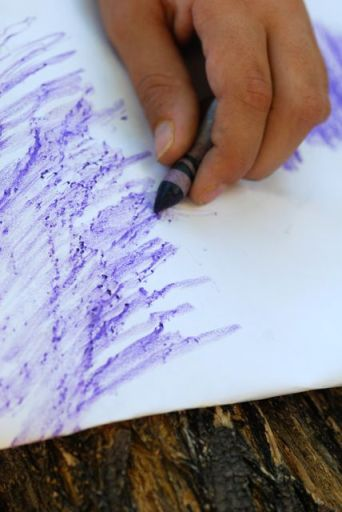 bark-rubbing-crayon