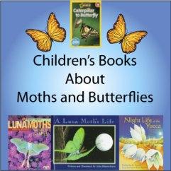 moth-childrens-books