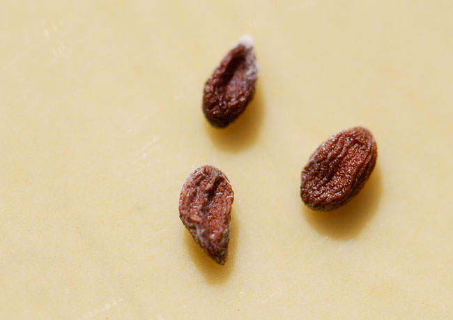 mystery-seeds-201