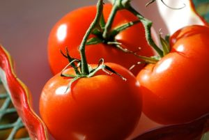 cluster-of-tomatoes