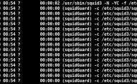 Fehler beim Upgrade von Squidguard bei Ubuntu 14.04