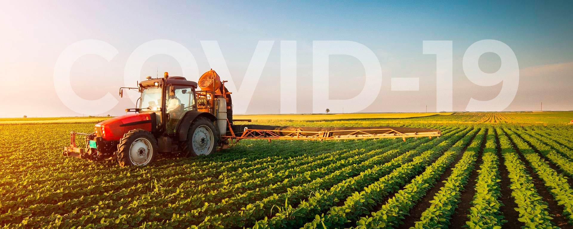 Agricultura-COVID19