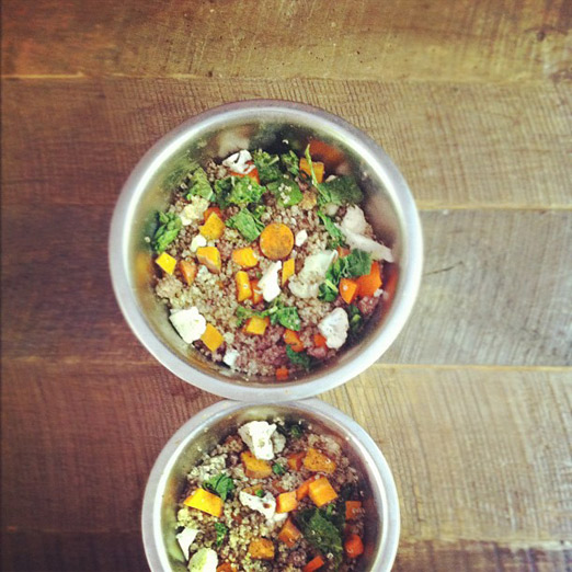 homemade_dog_food_healthy_alternative_for_dog_food