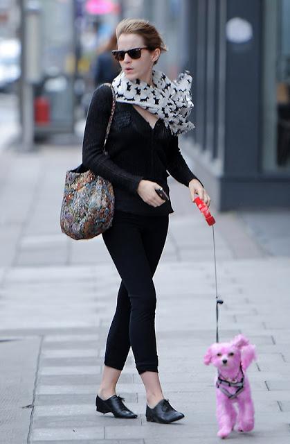 Emma-Watson dog