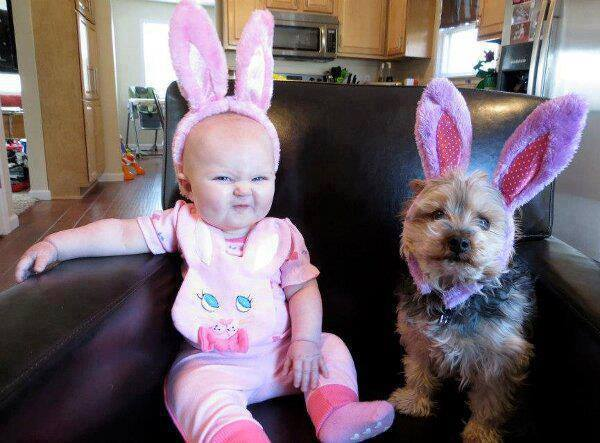 baby and easterdog
