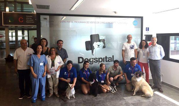 La inauguración del programa Dogspital en el Hospital Can Misses de Ibiza