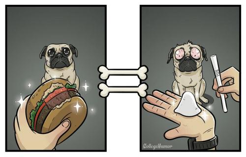 La-bouffe