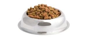 nourriture pour chiens croquettes