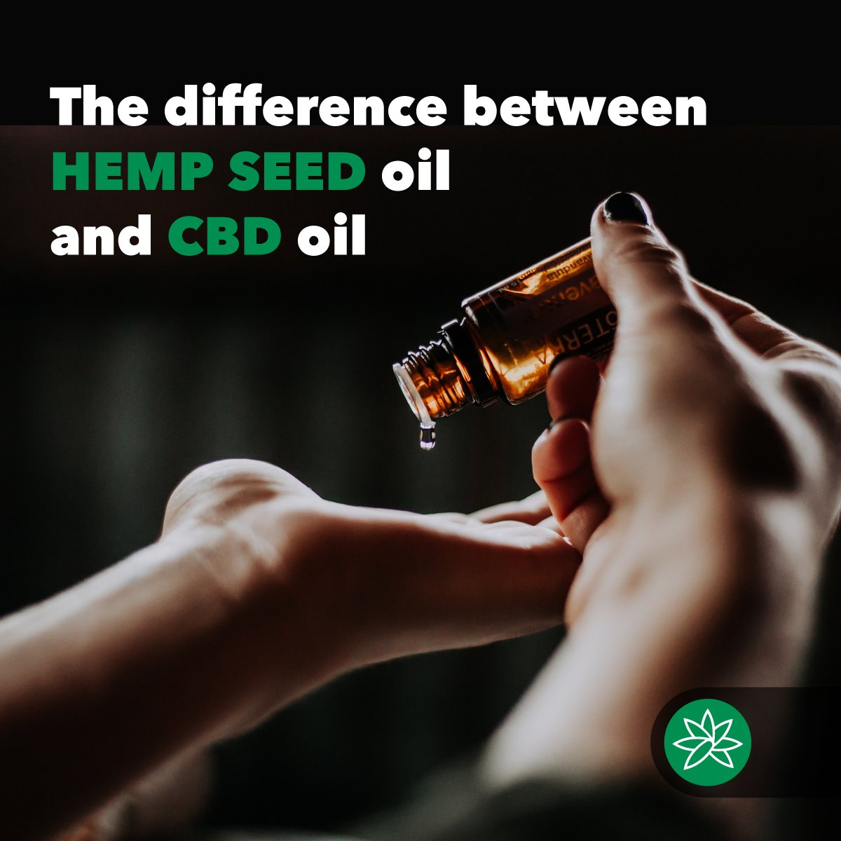 The difference between hemp seed oil and CBD oil