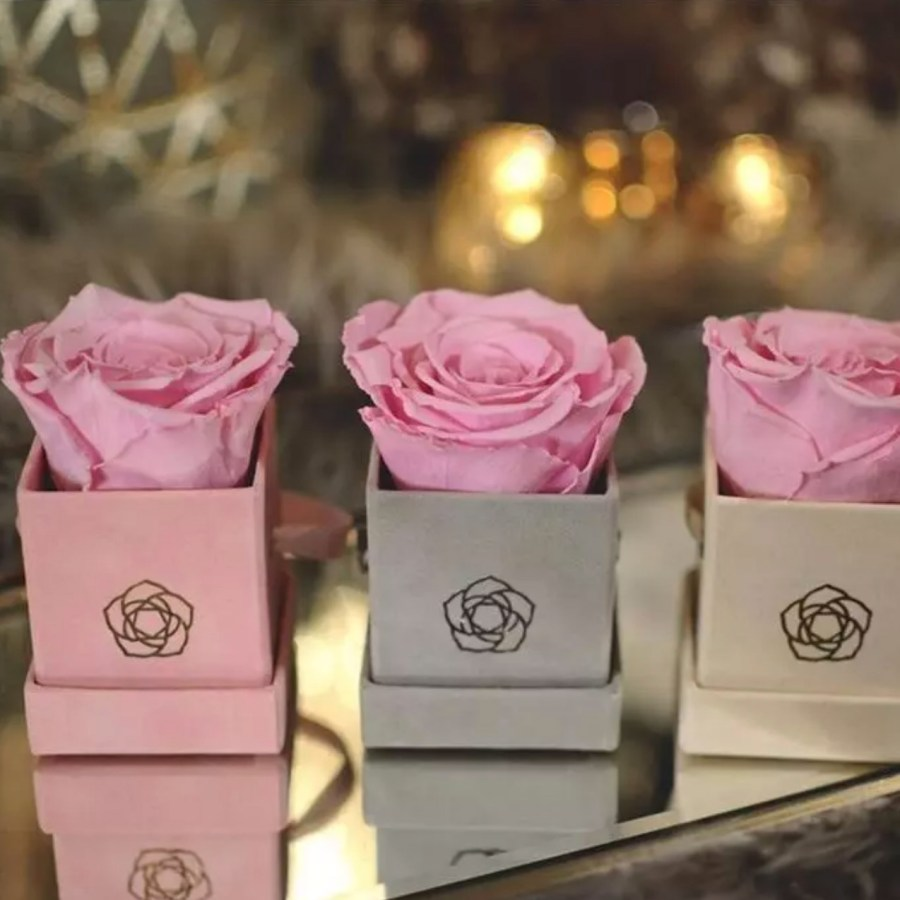 Suede flower boxes