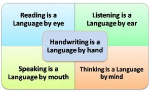 The 5 Components of Language