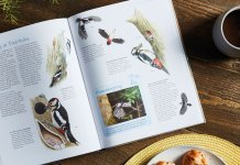 favourite-garden-birds-hardback-book-compeition