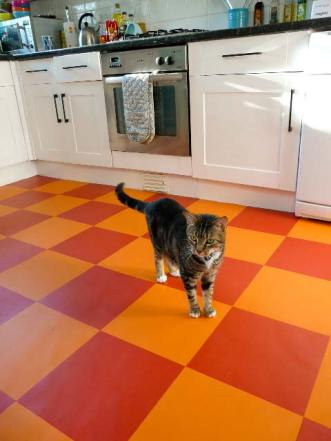 Marek's kitchen in Colours Collection Tangerine Dream & Sangria Red