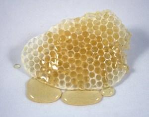 Honeycomb & honey