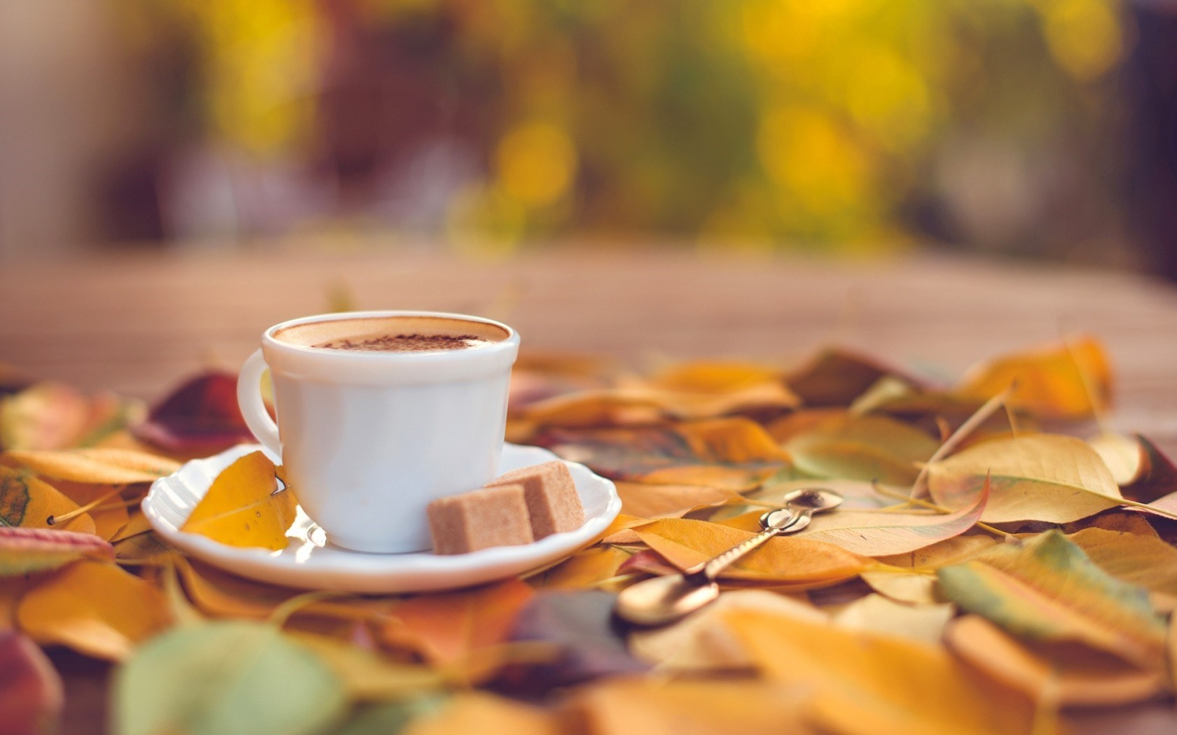 Fall Wallpaper Pintrest 20 Lovely Hd Coffee Wallpapers