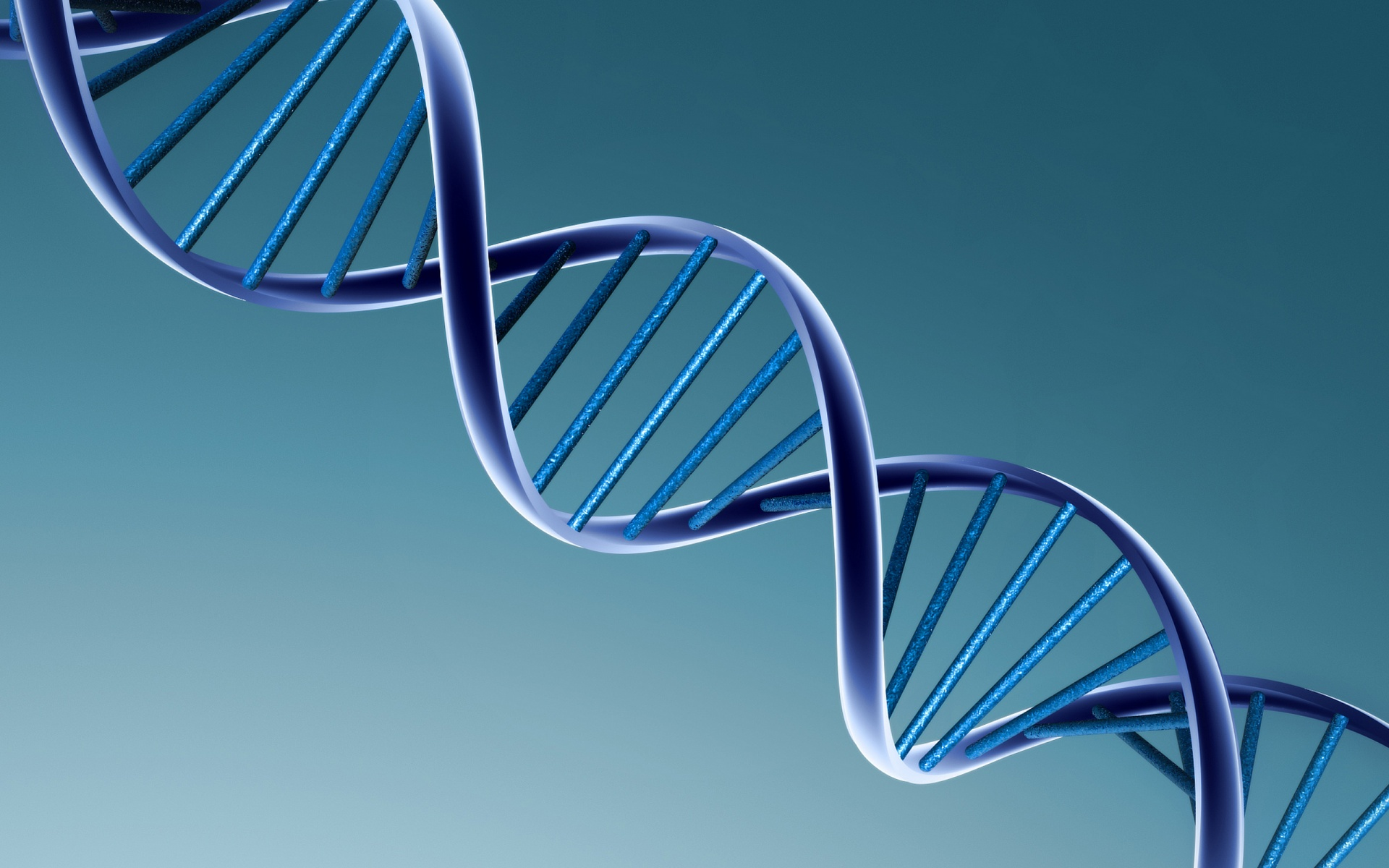 5 excellent hd genetic