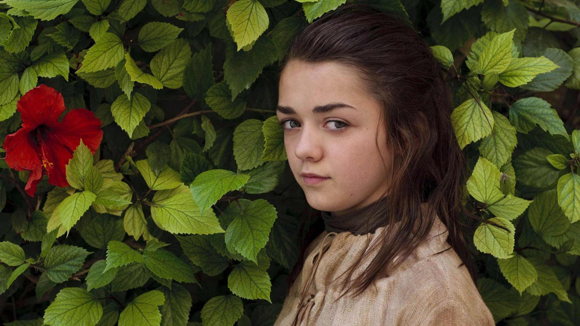 Computer Wallpaper For Teenage Girls 14 Hd Maisie Williams Wallpapers Hdwallsource Com