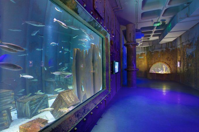blue-lit corridor with large fish tank