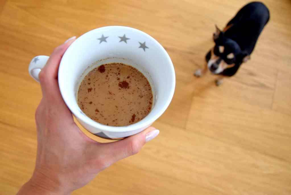 Coffein ist für Hunde ein giftiges Lebensmittel