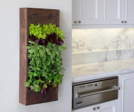 verticale-tuin-in-de-keuken