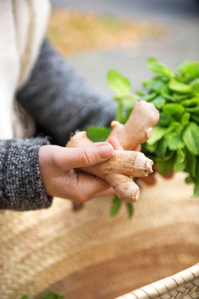 Frisch vom Markt: Ingwer