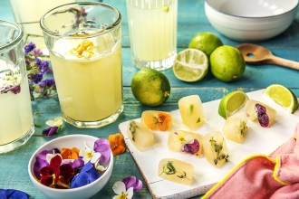 Lime Juice Cube Ideas To Zest Up Drinks