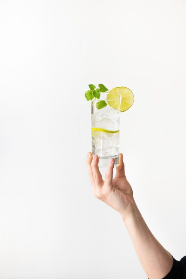 gin recipe-tonic-HelloFresh-mint