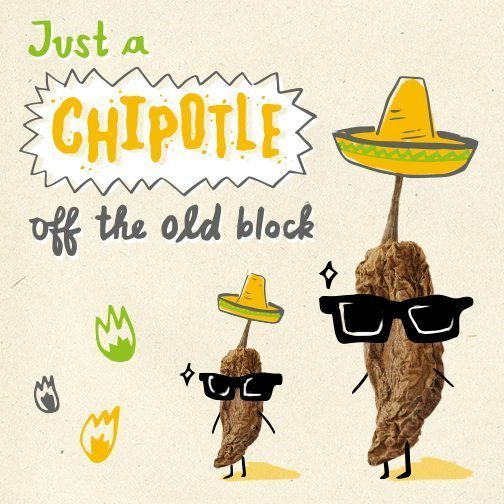 mexican chipotle illustration