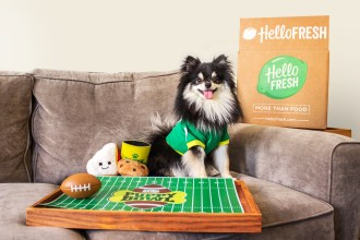 HelloFresh + Puppy Bowl = The PERFECT Sunday at Home