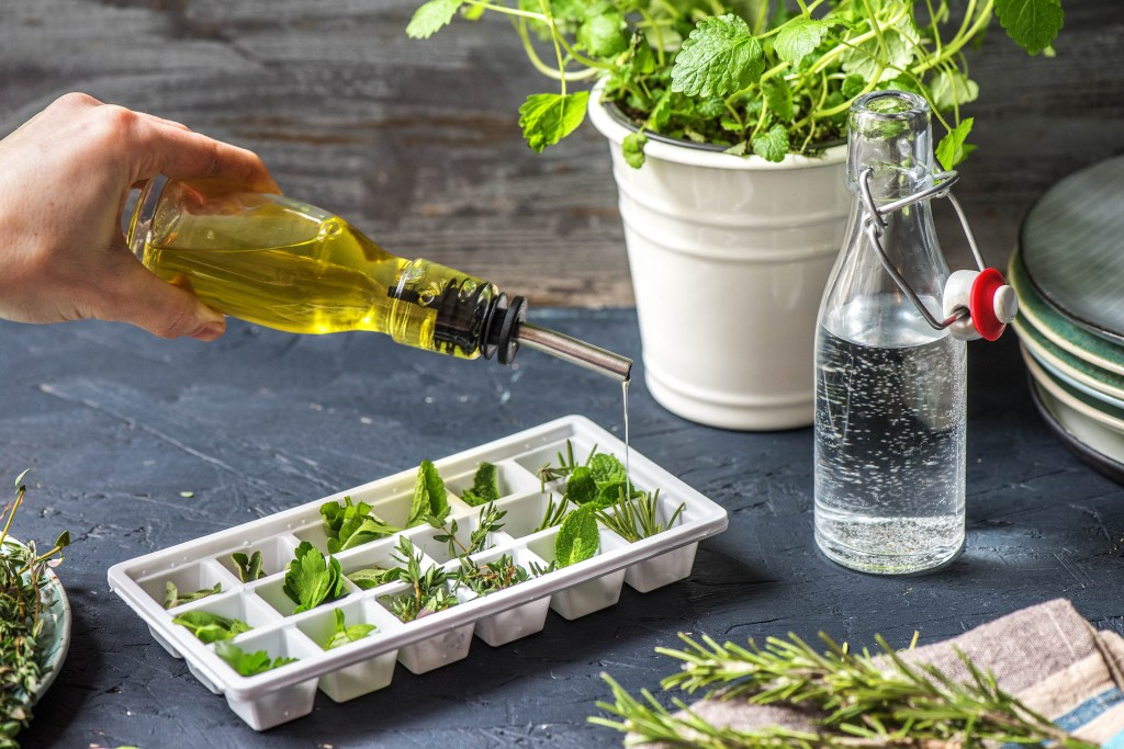 ways-to-enhance-flavor-freeze-herbs-ice-cubes-HelloFresh