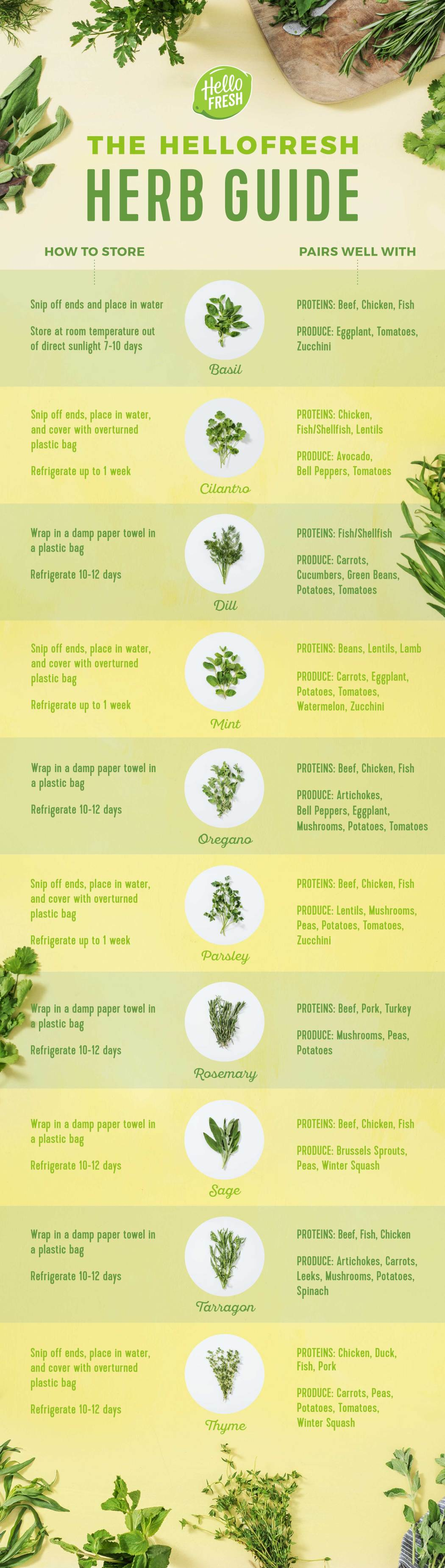 fresh herbs-infographic-how-to-store-cook-HelloFresh