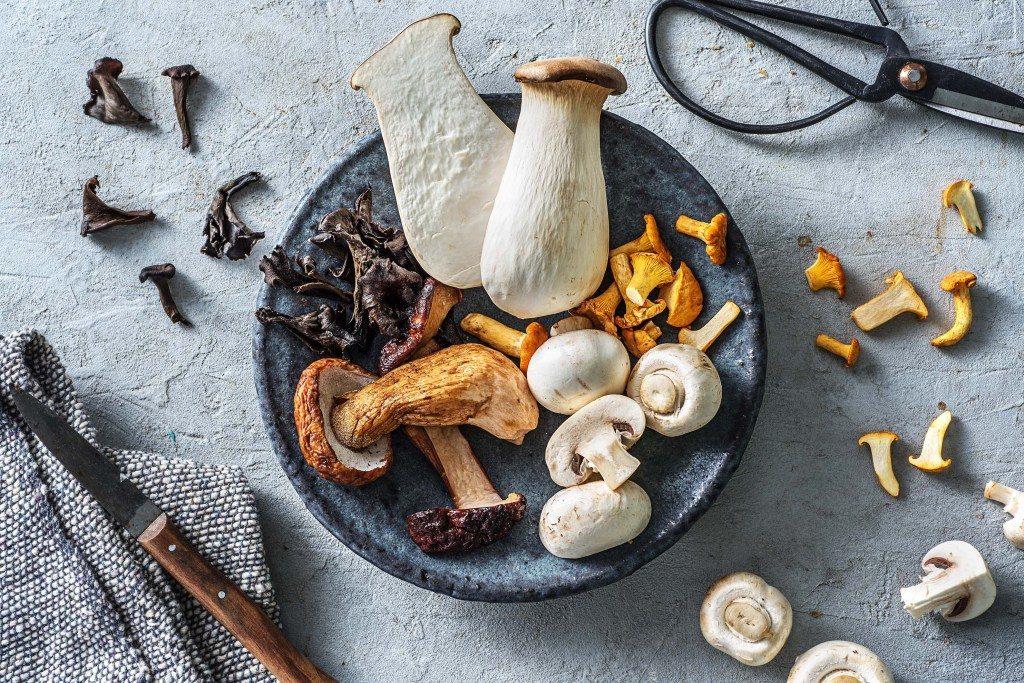 Pilze richtig vorbereiten