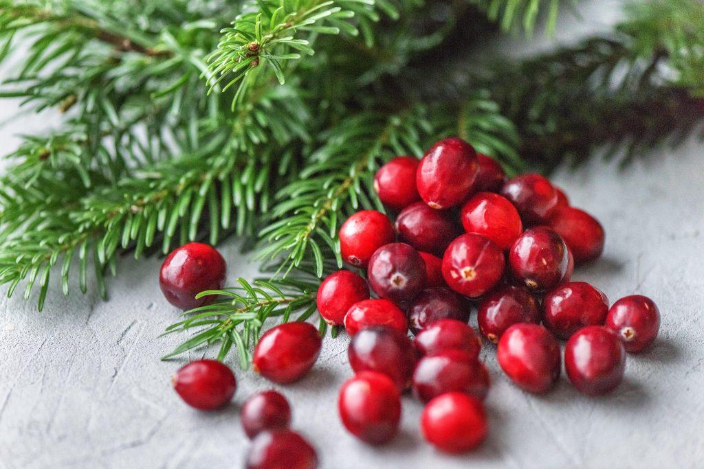 Weihnachtsduft selber machen: Tanne und Cranberries