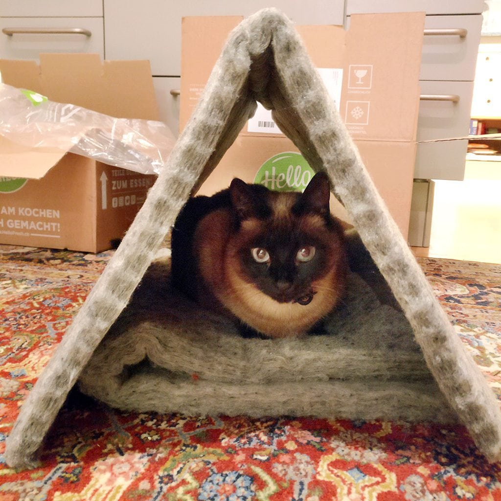 Auch als Zelt beliebt - unsere PET-Wolle
