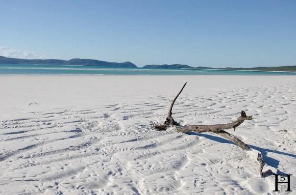 20120507-082139-Australien, Segeln, Weltreise, Whitehaven Beach, Whitsunday Islands-20120507-_DSC0255