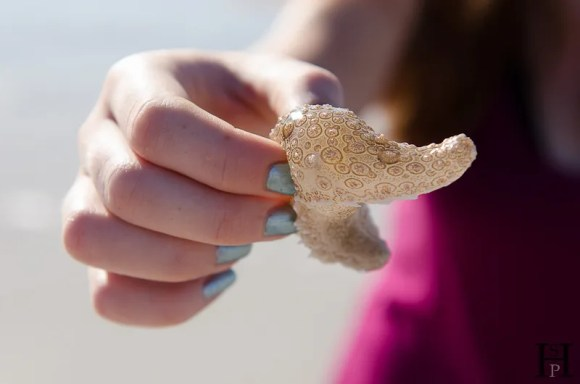 20120507-082855-Australien, Segeln, Weltreise, Whitehaven Beach, Whitsunday Islands-20120507-082855-Australien-Segeln-Whitehaven-Beach-Whitsunday-Islands_DSC0263
