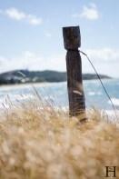 20120509-122951-Australien, Bowen, Strand, Weltreise-20120509-122951-Australien-Bowen-Strand_DSC0553
