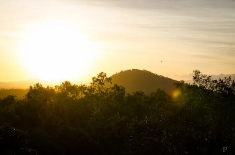 20120516-065313-Atherton Tableland, Australien, Granite Gorge, Wallabies, Weltreise-20120516-065313-Atherton-Tableland-Australien-Granite-Gorge-Wallabies_DSC2120