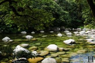 20120517-111914-Australien, Mossman Gorge, Weltreise-20120517-111914-Australien-Mossman-Gorge_DSC2924