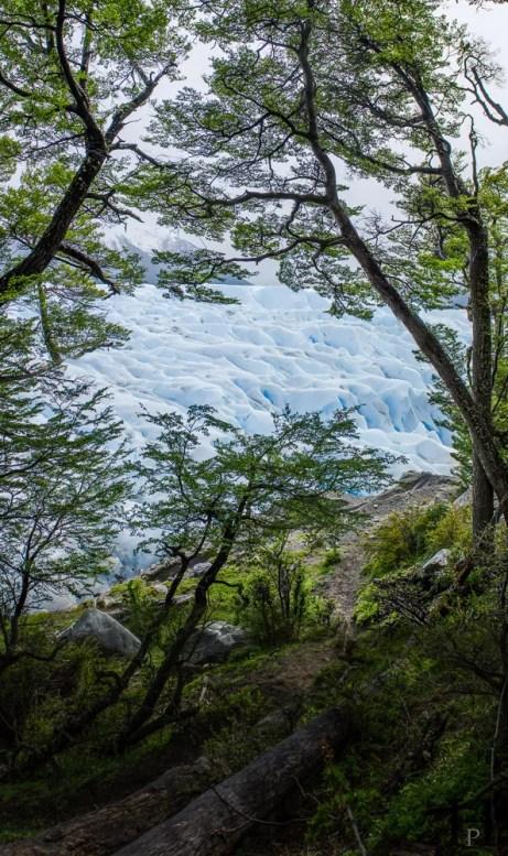 20121102-120044-Argentinien-El-Calafate-Glaciar-Perito-Moreno-Gletscher-Patagonien-Weltreise-_DSC8940-_DSC8945_6_images_pano