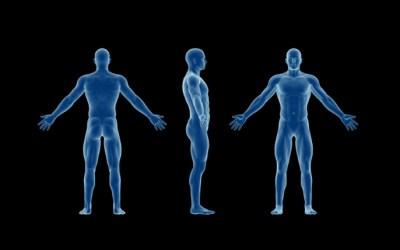 Dicas para realizar a avaliação postural na fisioterapia.