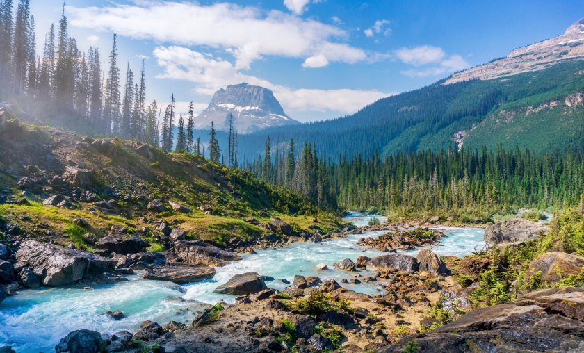 Image result for CANADA ROCKIES PICTURES